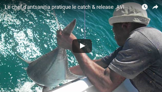 Le chef du village pratique le catch & release
