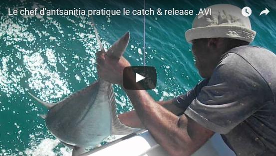Le chef du village pratique le catch & release